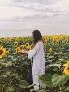 person standing on sunflower field